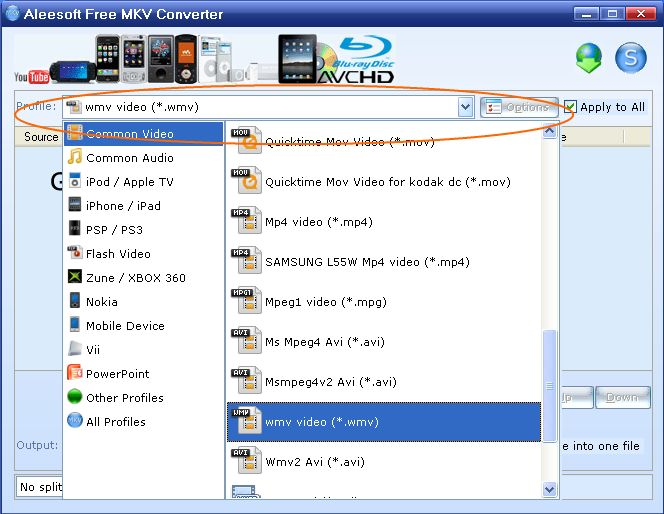 Aleesoft Ipad Video Converter Free Download.